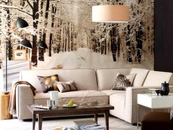 What colors to use to decorate in winter?