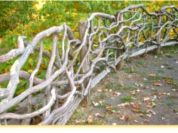 Making a fence with branches