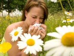 Having Perfume For Allergy