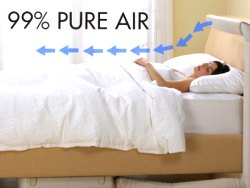 Purificateurs d'air pour les allergies de socorro