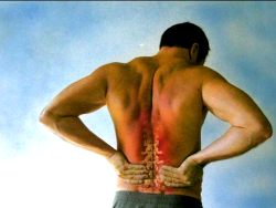 Muscular Therapy – Best Remedy For Injured Muscles