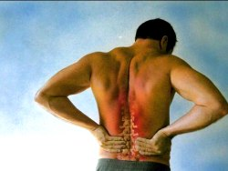 Chronic Back Pain – The Reasons Truck Drivers Suffer Most